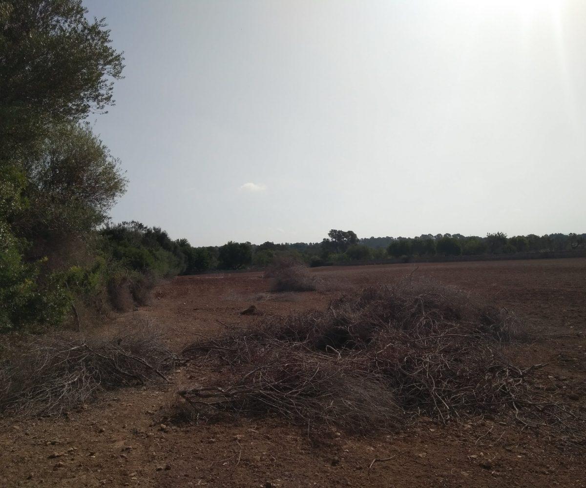 Vista Terreno